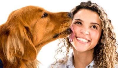 5 интересни факта за кучешката слюнка