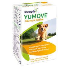 YuMuveAct