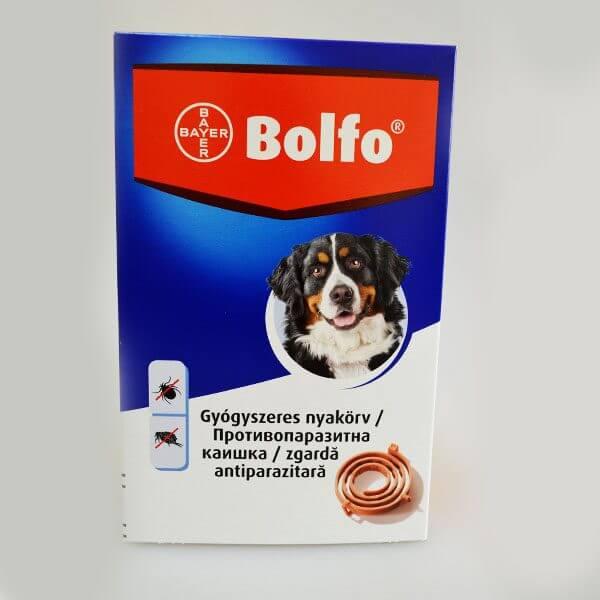 bolfo-70cm-600x600